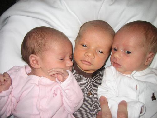 3littleBees